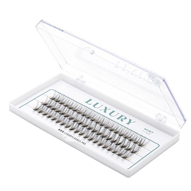 Kępki rzęs Luxury MINT C 12mm - naturalne podkręcenie, 10D